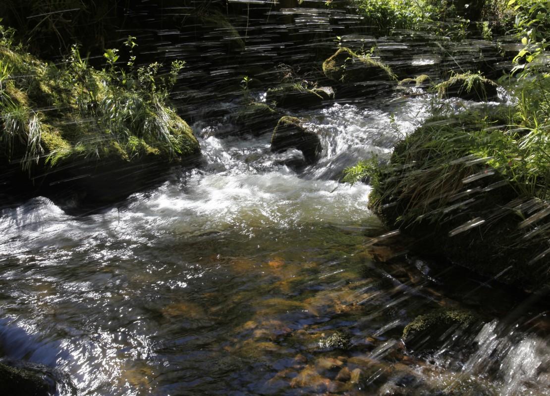 Wasser regt die Sinne an und ist Erholungsraum. Im Unterdorf sollen die Bachläufe deshalb wieder besser erlebbar gemacht werden. (Foto: Baiersbronn Touristik)