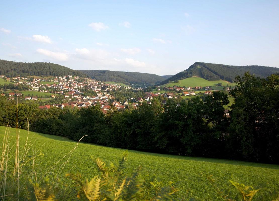 Sommerseite Baiersbronn, Ortsansicht