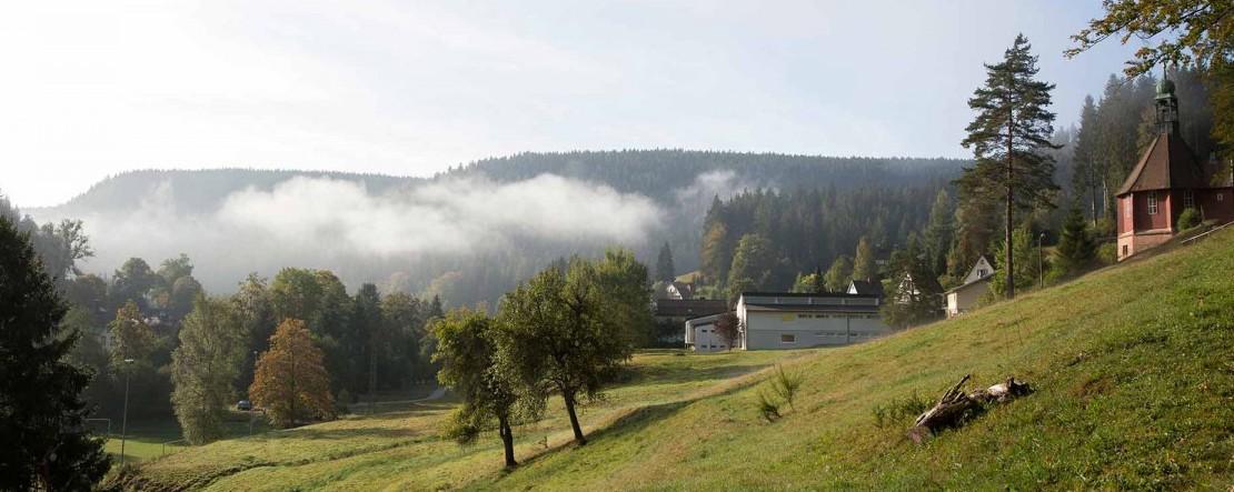 KW31_Gartenschau